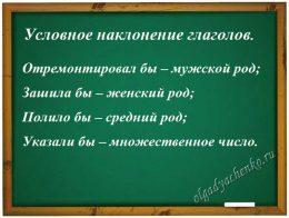 Условное наклонение глаголов. Примеры